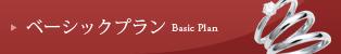 ベーシックプラン Basic Plan