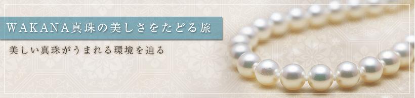 WAKANA真珠の美しさをたどる旅
